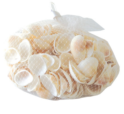 Bag of 3cm Scallop Shells 400G