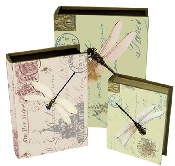 Book Box Canvas - Dragonflys  (Set of 3)