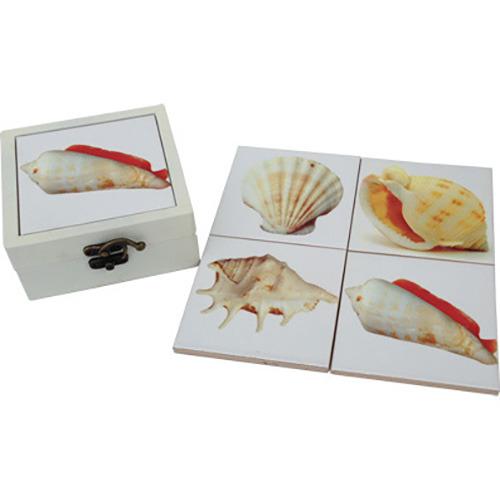 Boxed set of Ceramic Coasters 11cm - Shells